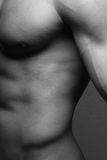 Male torso. Muscled male torso in black and white Stock Images