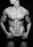 Male torso. Muscled male torso in black and white stock image