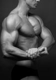 Male torso Royalty Free Stock Images