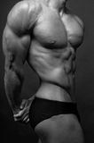 Male torso. Muscled male torso in black and white Royalty Free Stock Photos