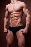 male torso arkivfoton