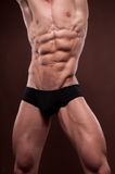 Male torso. Muscled male torso with strong abs Royalty Free Stock Photography