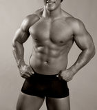 Male torso Royalty Free Stock Photo