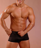 Male torso Stock Photography