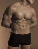 Male torso Stock Photography