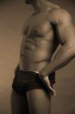 Male torso. Buff male model sepia Royalty Free Stock Photo