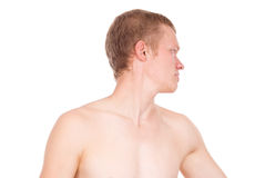 Male torso, bare. Isolated on white background Royalty Free Stock Photo