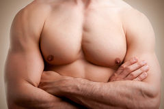 Male Torso. Close up of a muscular male torso, arms crossed Stock Images