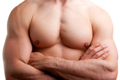 Male Torso. Close up of a muscular male torso, arms crossed, isolated in white Stock Photos
