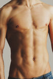 Male torso. Close-up of shirtless young man with perfect torso stnading against grey background Stock Images
