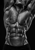Male torso. Muscled male torso with abs stock photography