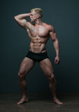 Male torso. Muscled male torso with abs Royalty Free Stock Photos