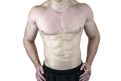 Male Torso. Muscular male torso isolated on white background Stock Image