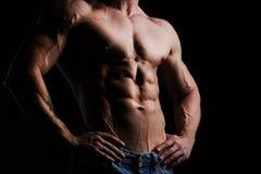 Male torso Royalty Free Stock Photos