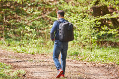 Male tourist with backpack in the forest. Tourist with backpack hiking in a beech forest Royalty Free Stock Images