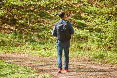 Male tourist with backpack in the forest. Tourist with backpack hiking in a beech forest Stock Photography