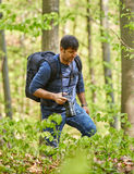 Male tourist with backpack in the forest. Tourist with backpack hiking in a beech forest Royalty Free Stock Photos