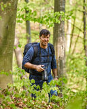 Male tourist with backpack in the forest. Tourist with backpack hiking in a beech forest Stock Photos
