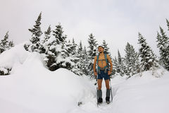 Male tourist with a backpack, with a naked torso and legs is amo. Ng the snowdrifts and trees Stock Photos