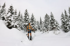 Male tourist with a backpack, with a naked torso and legs is amo. Ng the snowdrifts and trees Royalty Free Stock Photos