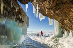 Male tourist with a dog near the ice grotto Olkhon Island on Lak. E Baikal, winter day Stock Photography