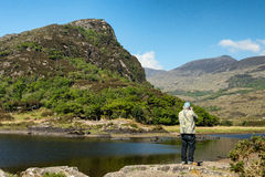 Male tourist, rear view taking pictures of Killarney National Pa. Rk on the Ring of Kerry, County Kerry, Ireland. Beautiful scenic natural irish countryside Stock Image