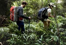 Male tourists trekking in a forest Royalty Free Stock Photo