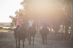 Male trainer guiding women in riding horse. At barn Stock Photo