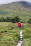 Male trekker walks along a path. Male trekker walks along a mountain path in Snowdonia Royalty Free Stock Images