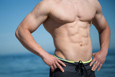 Male upper body. Muscular upper male body Royalty Free Stock Photo