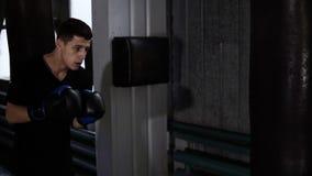 male utbildning för boxare Göra starka hårda slag på boxningpåse Caucasian ung grabbgenomkörare på idrottshallen som är strävsam, stock video