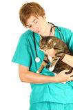 Male vet with cat. Male vet in green protective uniform with cat in surgery Royalty Free Stock Photos