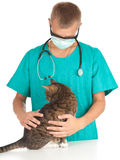 Male vet with cat in surgery. Male vet in green protective uniform and mask with cat in surgery Stock Images