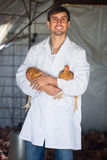 Male vet in hen house. Joyful smiling young male vet in white coat holding chicken in poultry farm Royalty Free Stock Image