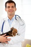 Male vet portrait Stock Photo