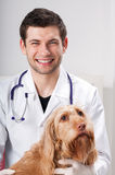 Male vet and pretty dog. In surgery Stock Images
