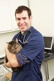 Male Veterinary Surgeon Holding Cat In Surgery Stock Photos