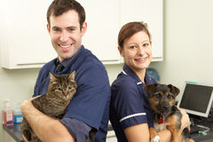Male Veterinary Surgeon And Nurse. Holding Cat And Dog In Surgery Smiling Stock Image