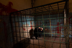 Male victim imprisoned in a metal cage with a blood splattered w Royalty Free Stock Photo