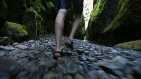 Male Walking Through Creek hiking stock footage