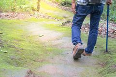 Male walking in a forest, Holiday activities. Male walking in a forest, Holiday activities, Business Stock Photography
