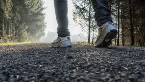 Male walking in forest. Young male legs with sneakers walking on forest trail Stock Image