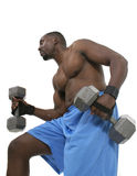 Male Weight Lifter 4 Royalty Free Stock Photos