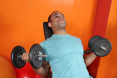 Male weight lifting royalty free stock photography