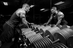 Male with weights. Man doing and exercise at a gym Royalty Free Stock Photography