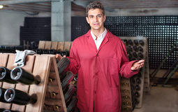 Male wine maker showing bottles on winery Royalty Free Stock Photo