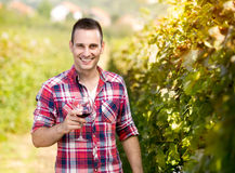 Male winegrower with glass of wine. Young male winegrower with glass of wine Royalty Free Stock Images