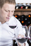 Male winemaker smelling a red wineglass. Closeup of a young man on a wine tasting session on the olfactory phase with the wineglass in the nose at a restaurant Stock Photos