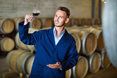 Male winemaker in uniform having glass of wine in hands in cell. Smiling male young winemaker in uniform having glass of wine in hands in cellar Stock Photography
