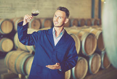 Male  winemaker in uniform having glass of wine in hands in cell Stock Photos